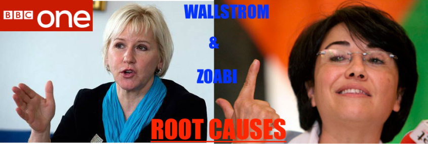 wallstrom-and-zoabi